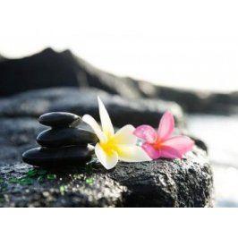 Zážitek - Havajská masáž - Vysočina