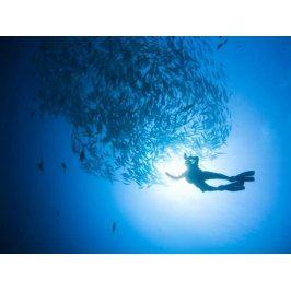 Zážitek - Kurz potápění - Jihomoravský kraj