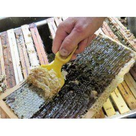 Zážitek - Vytáčení medu - Plzeňský kraj